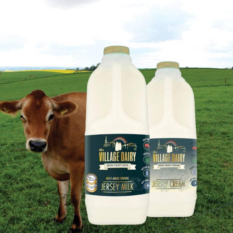 Jersey Milk Collection - Village Dairy