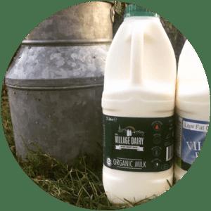 Village Dairy Organic Milk